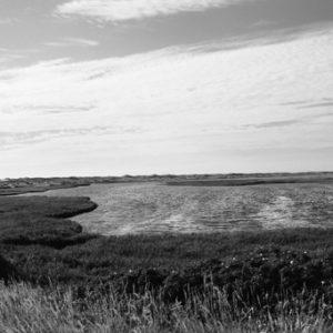 Panorama Danmarks natur - Dansk-natur-panorama-billeder4you
