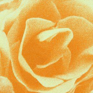Abstrakt rose i gul- abstrakt blomst i gul