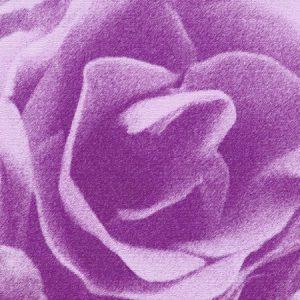 Abstrakt rose i lilla - abstrakt blomst i lilla