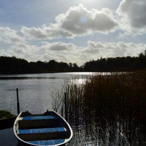 Båden - billede af lille båd i sø i det gode vejr taget af billder4you