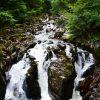 Skotsknatur vandfald - Billede af vandfald i Scotland
