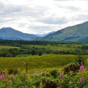 Højlandet - Scotlands natur taget af billeder4you