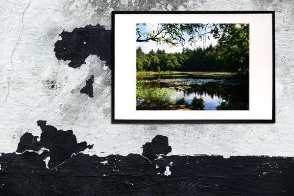 foto af Tverstedsøerne