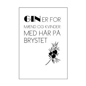 Gin er for de seje tekstplakat fra Billeder4you
